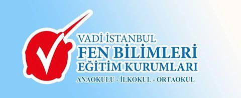 vadi istanbul_logo